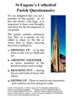 St Eugene's Cathedral Parish Survey